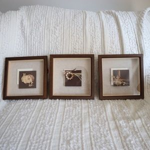 A set of 3 Boho framed wall art
